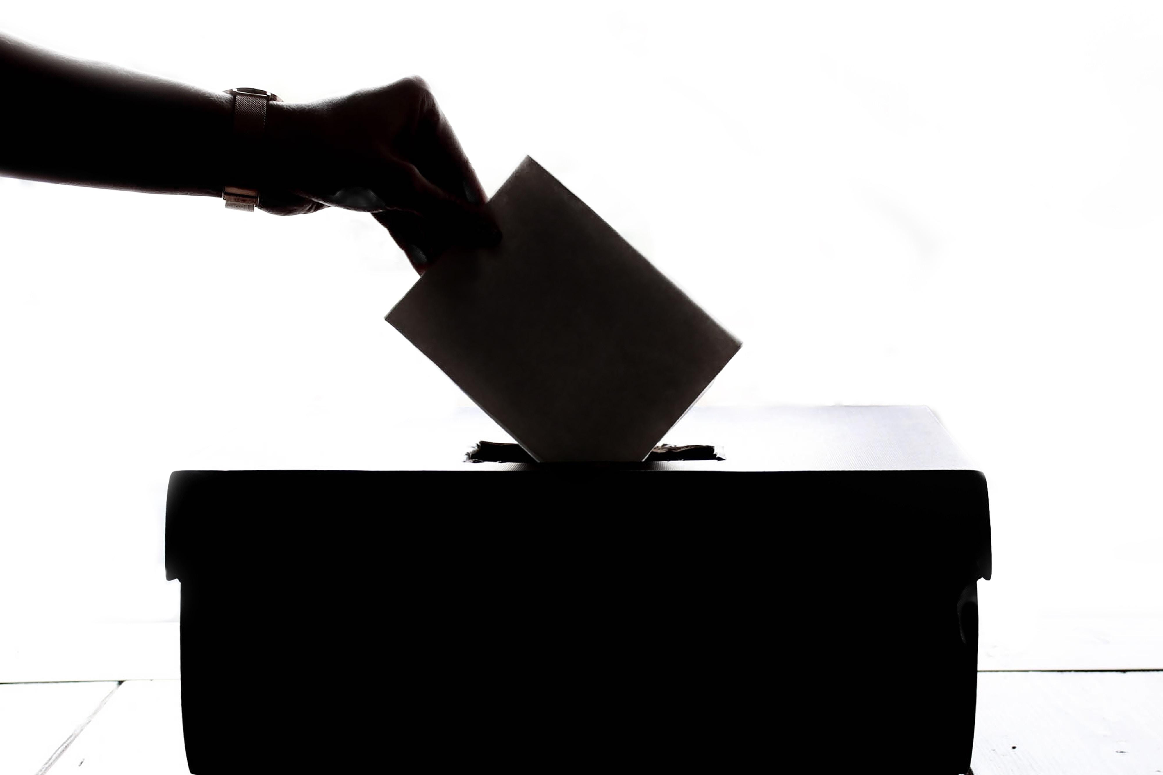匿名 投票 line